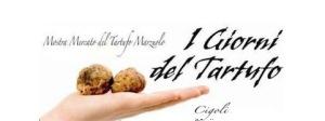 news-mostra_mercato_tartufo_marzuolo_1